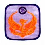 方形消防臂章